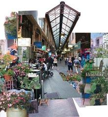 Community Greens_Image 06 by Teresa Duggan David Pinn Raquel Fua