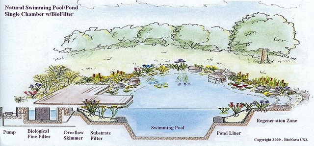 Blog ziger snead architects - Swimming pool filtration system design ...